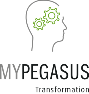 MYPEGASUS Transformation