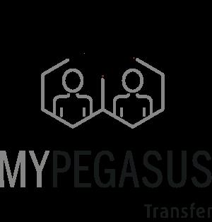Transfergesellschaft, Transferagentur MYPEGASUS